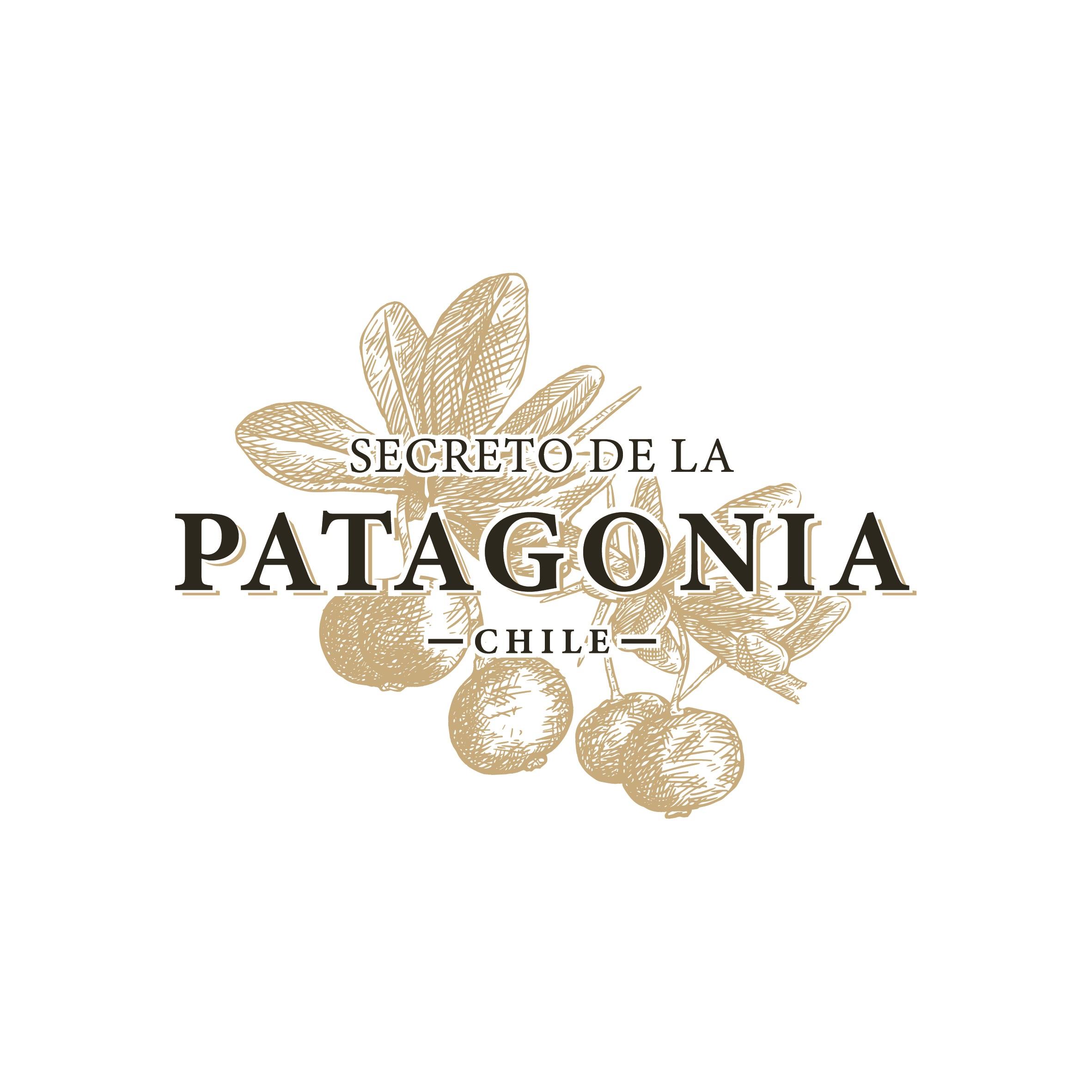 SECRETO DE LA PATAGONIA