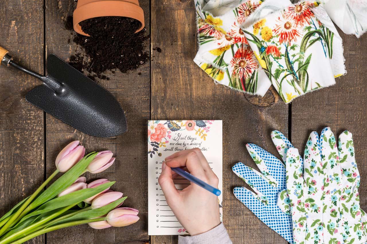 ¡Nos encantan los jardines y queremos ver crecer el tuyo!