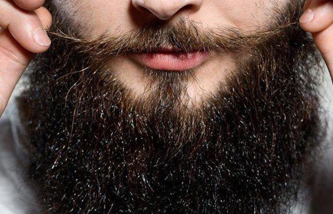 Barba & Bigote