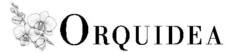Lanas Orquidea