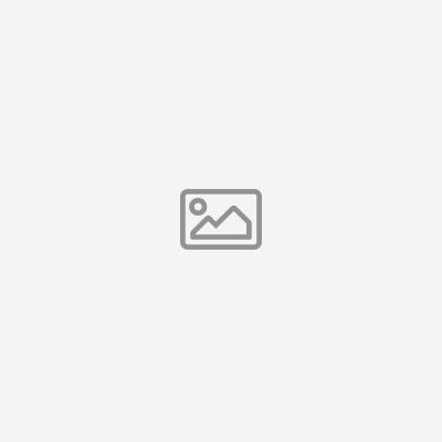 Funda para iPhone 11 Pro Max Feronia Bio ItSkins kaki