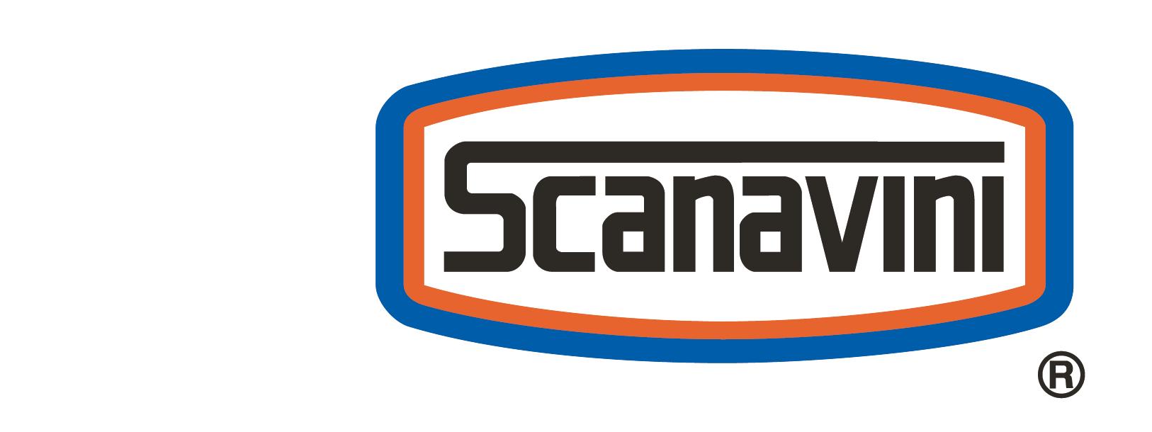 Logo Compra online en nuestra tienda Scanavini