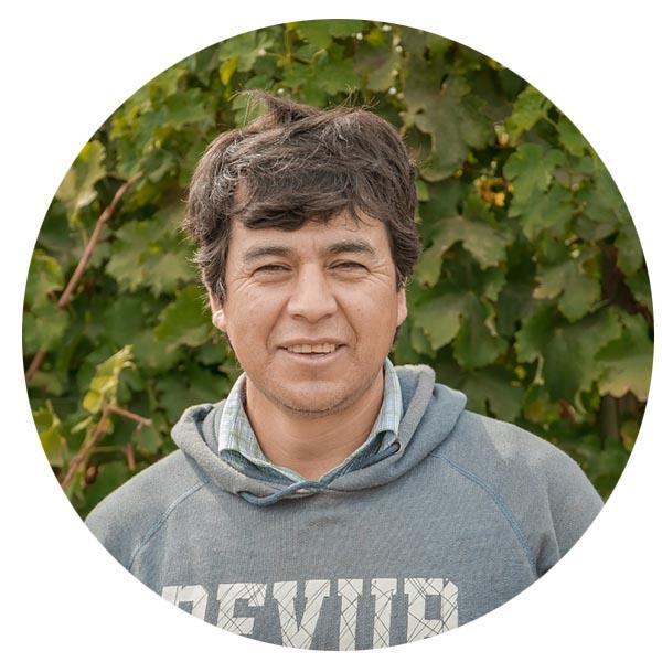 <strong>Jaime Castro</strong><br>Jefe de Campo